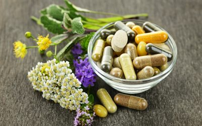Bacopa Monnieri Benefits For Memory And Cognitive Function