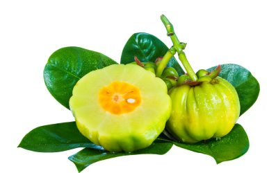 What Is Garcinia Cambogia and How Is It Used?